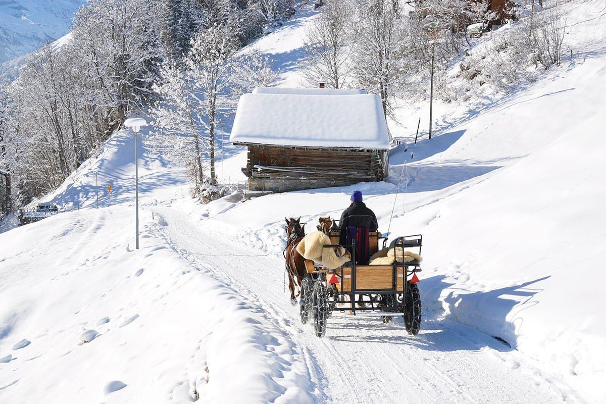 Pferdeschlittenfahrten - Winterurlaub im Salzburger Land
